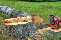 free Hounslow West tree felling quotes